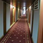 NovoSibirsk Hotel Sibir