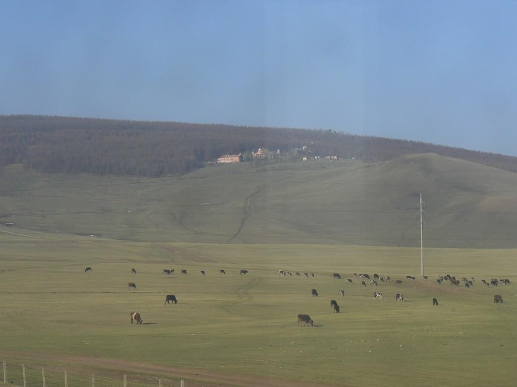 Hills Southeast of Ulaanbaatar
